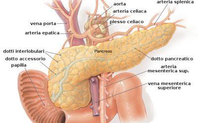 Tumore al Pancreas: ecco i sintomi da non sottovalutare