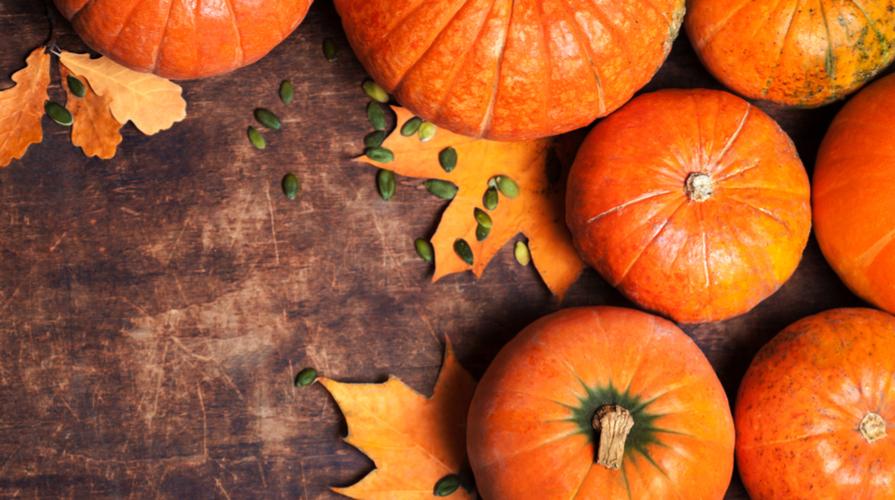 Zucca: proprietà e benefici del simbolo di Halloween